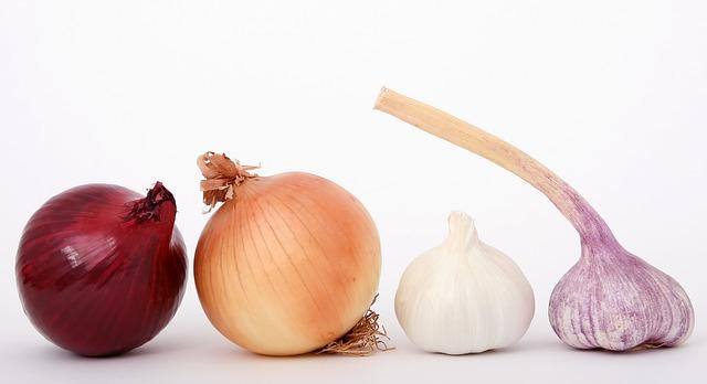 food onion
